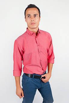 Рубашка однотонная, хлопок, длинный рукав №208F002 (Бордо)