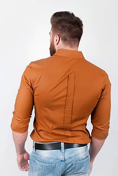 Рубашка мужская из хлопка, длинный рукав №208F003 (Коричневый)
