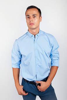 Рубашка с длинным рукавом однотонная №208F008 (Голубой)