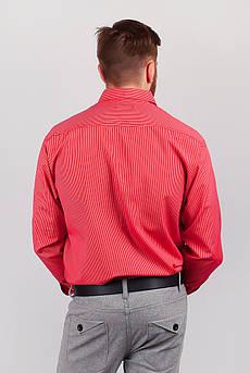 Рубашка мужская красная, в полоску №222F035 (Красный)