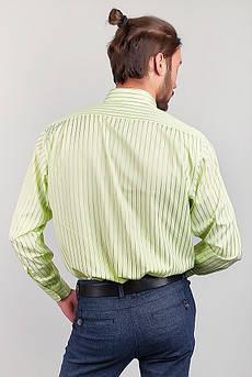 Рубашка мужская классическая Fra №869-15 (Светло-оливковый)