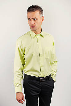 Рубашка мужская в полоску Fra №869-34 (Салатовый)