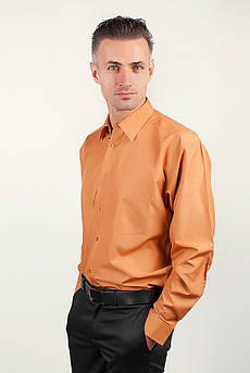 Рубашка мужская с длинным рукавом Fra №874-2 (Терракотовый)