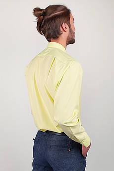 Рубашка классическая мужская, салатовая  Zeg №818-54 (Салатовый)