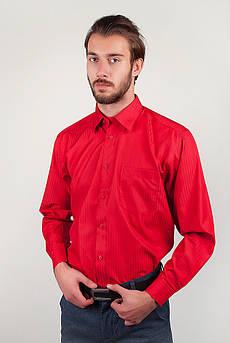 Рубашка мужская яркая Fra №868-30 (Малиновый)