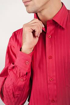 Рубашка яркая с длинным рукавом Fra №871-11 (Коралловый)