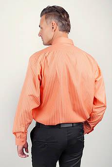 Рубашка мужская яркая с длинным рукавом Fra №873-19 (Оранжевый)
