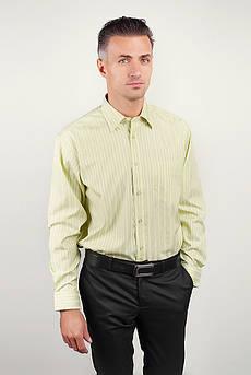 Рубашка мужская regular fit салатовая, в полоску Fra №8012-14 (Салатовый)