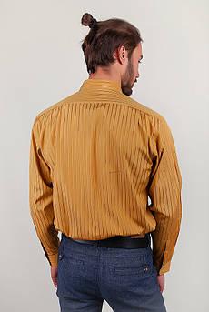 Рубашка мужская в полоску Fra №869-12 (Терракотовый)