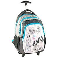 Рюкзак школьный на колесах Paso RACHAEL HALE RHC997