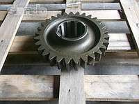 Шестерня 700А.17.01.083 (Z=29) вала грузового К-700, К-701