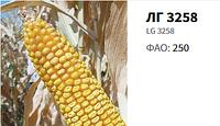 Семена кукурузы ( Лимагрейн ) ЛГ 3258