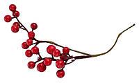 Ягоды смородина бордовая, 20 шт.на веточке