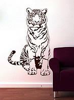 Покраска тонировка стен потолков