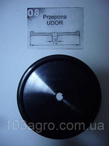 Мембрана насоса 08 Udor Zeta 140, Zeta 170, фото 2
