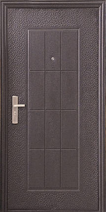 Бюджетные входные двери  ТР-С 09 дешево, фото 2