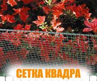 """Сетка """"КВАДРА 10"""""""
