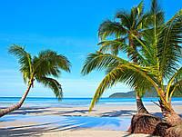Панно Пальмы Пляж фотопечать кафель на стены, плитка 20х30см.