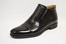 Кожаные мужские ботинки Tapi 2294