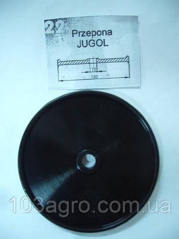 Мембрана насоса 22 Jugol, фото 2