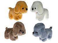 Мягкая игрушка С 22873 Собачка