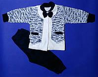 Велюровый костюм джентельмена, 3-6 мес, фото 1