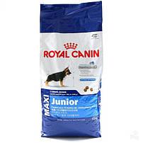 Royal Сапіп MAXI для собак (26 - 44 кг)