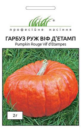 Семена тыквы Руж Виф Дьетамп 2 г, Tezier, фото 2