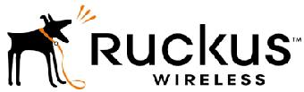О компании Ruckus Wireless
