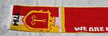 Шарф фанатский вязанный с символикой г. Одессы, фото 10