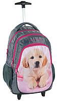 Рюкзак школьный на колесах PASO с собакой RHB-997KOL
