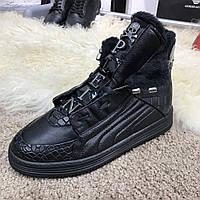 Кроссовки Philipp Plein Hi Top Sneakers Core Black   реплика, фото 1