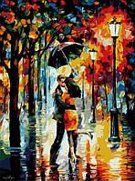 Роспись по номерам на холсте Танец под дождем, 40х50см. (MG1016, КН1016), фото 1