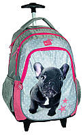 Рюкзак школьный на колесах PASO с бульдогом PEI-997