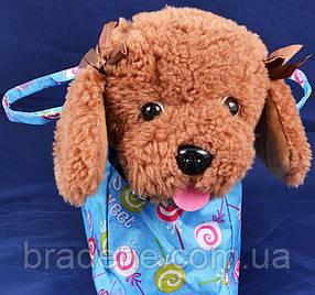 Мягкая игрушка собака в сумке 423A
