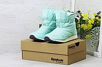 Женские ботинки дутики Reebok на меху (мятные), ТОП-реплика, фото 1