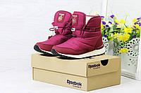 Женские ботинки дутики Reebok на меху (бордовые), ТОП-реплика, фото 1