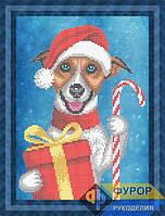 Схема для вышивки бисером - Собака в шапочке с подарком, Арт. ЖБч4-075