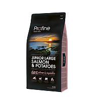 Сухой корм 15 кг для щенков и юниоров крупных пород Профайн / Junior Large Breed Salmon & Potatoes Profine