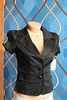 Пиджак с бантиками с коротким рукавом, размеры M,L,XL