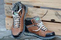 Ботинки полуботинки зимние кожа Lacoste лакоста мужские светло коричневые типа Харьков (Код: Ш187а)