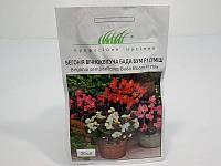 Семена бегонии вечноцветущей Бада Бум, смесь - 20 семян