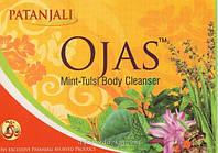 Аюрведическое мыло Оджас Туласи-Мята 75 г Ojas Mint-Tulsi soap, Patanjali