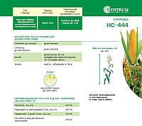 Кукуруза НС-444