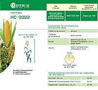 Кукуруза НС-3022
