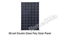 Сонячна панель ReneSola подвійне скло 265W