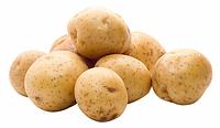 Картофель молодой Франция