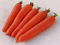 Морква Цідера  1кг. MoravoSeed
