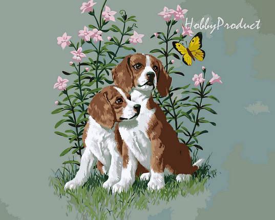 Набор-раскраска по номерам Два щенка худ. Сарнофф Артур Сарон, фото 2