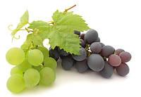 Виноград в ассортименте